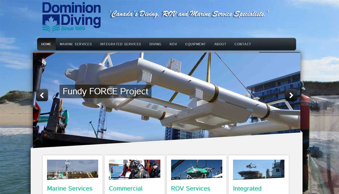 Dominion Diving Ltd - Net Impact Client
